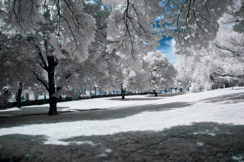 infrarosso