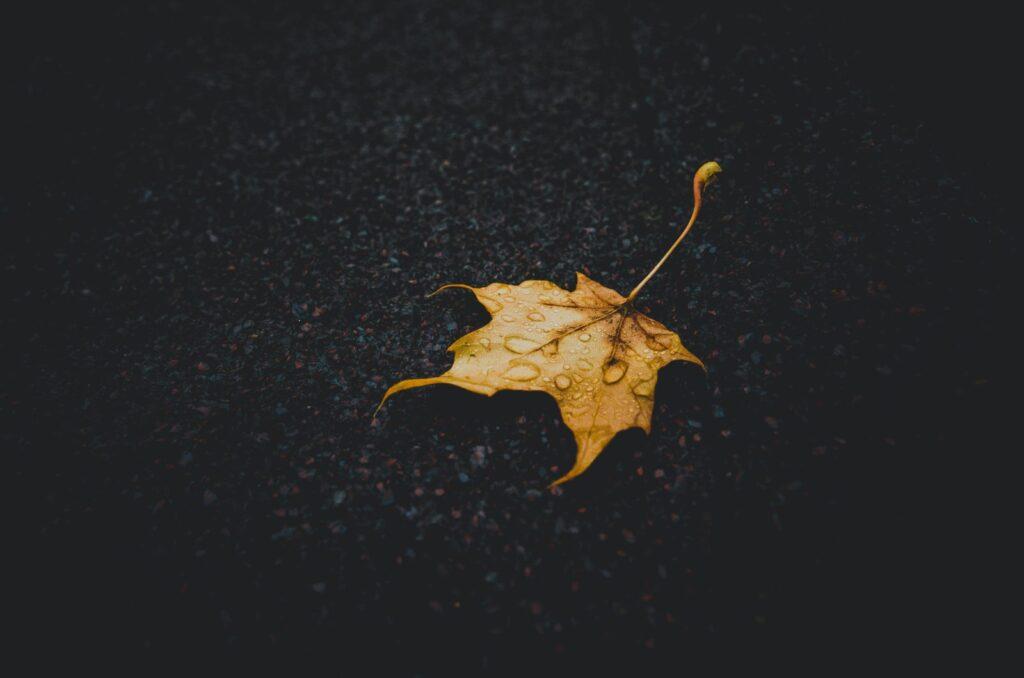 fotografare la pioggia